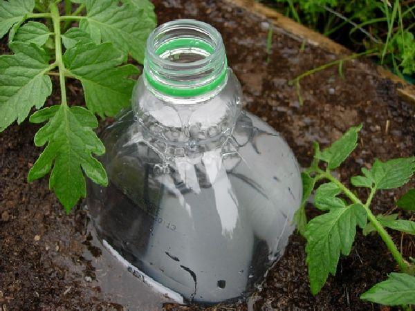 Bottle Drip Irrigation