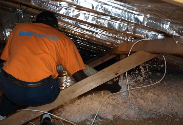 Eco-friendly blow in insulation