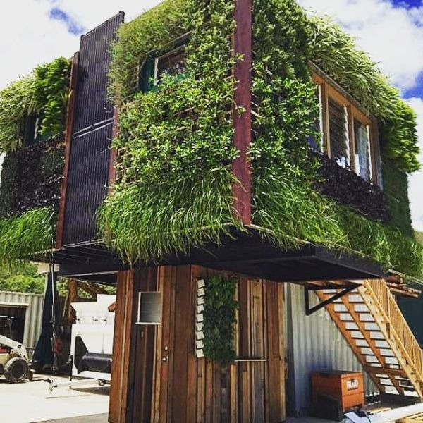 green walled house (1)
