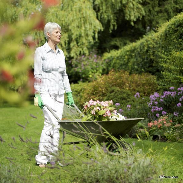 boost-your-organic-garden-4