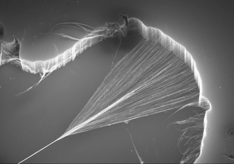 Carbon nanotube yarns