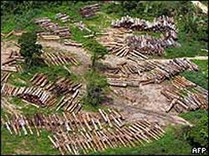 amazon stealth logging revealed