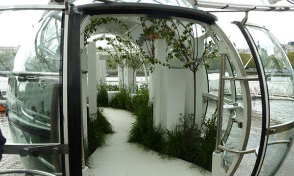 Andy Sturgeon's capsule garden