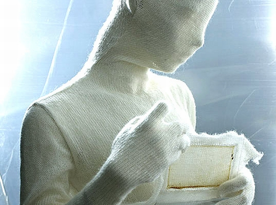 bacteria fabric 1