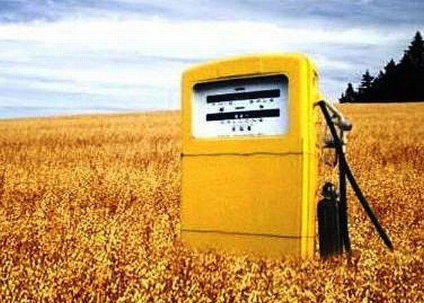 bio fuel Food Problem