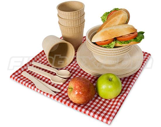 biodegradable picnic ware 5784