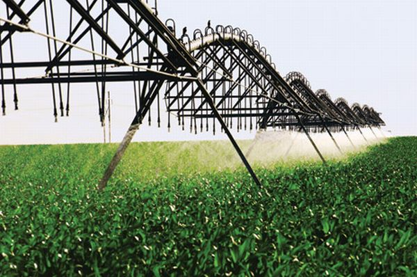 Biofuel's Water Problem