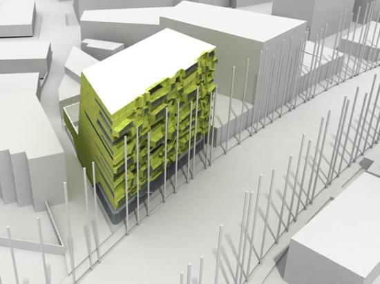 byophyte building 4