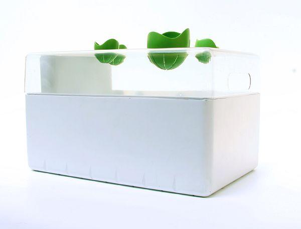 Concept Hydroponics System