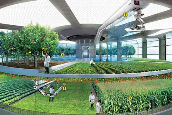 design concept of vertical farming