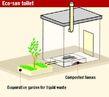 Eco Friendly Toilets 2331
