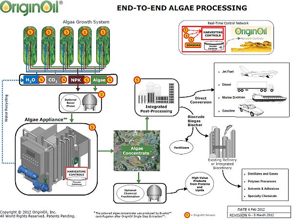 End to End Algae Processing