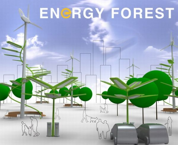 5 Eco Friendly Technologies That Are Inspired By Nature