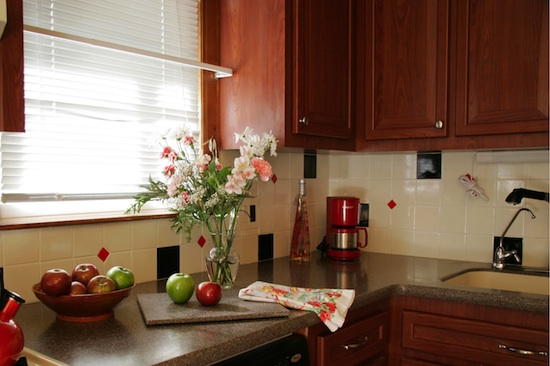 Environmental friendly ideas for refacing your kitchen cabinets