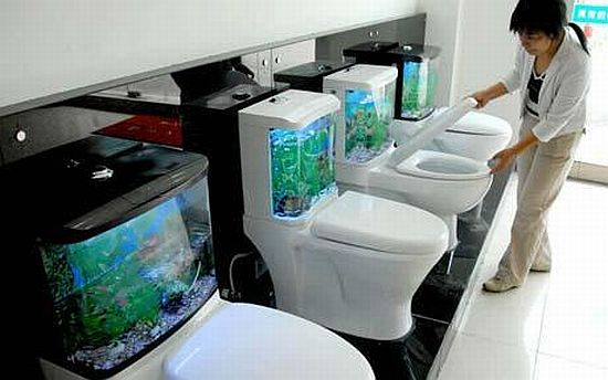 fish tank Uwxpn 69