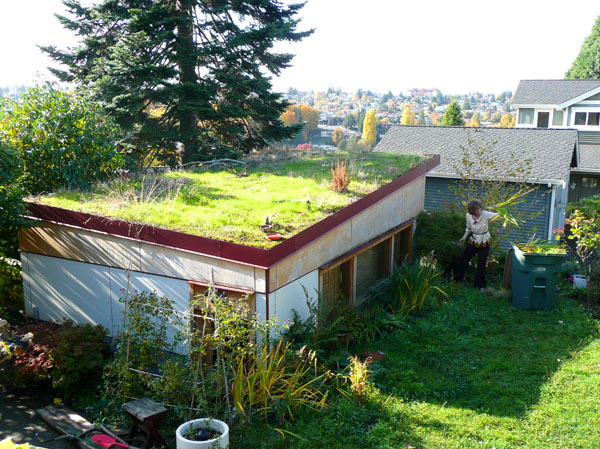 Garage green roof in Mount Baker