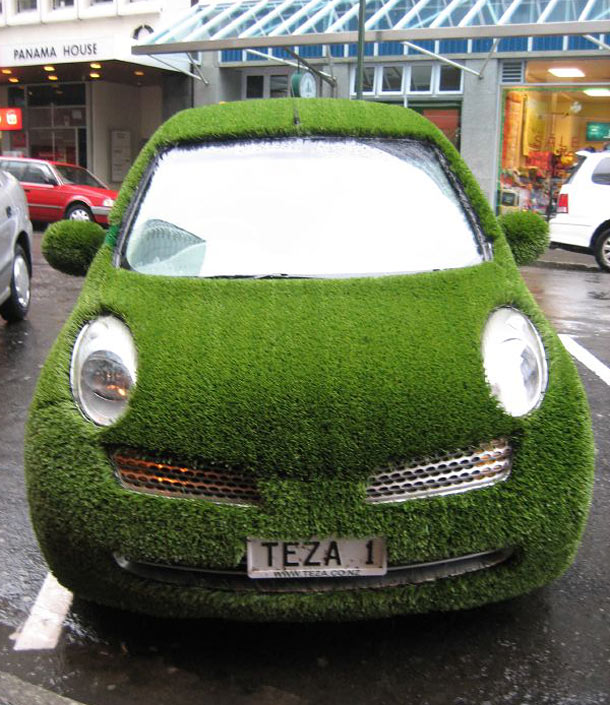 Grassy Cars