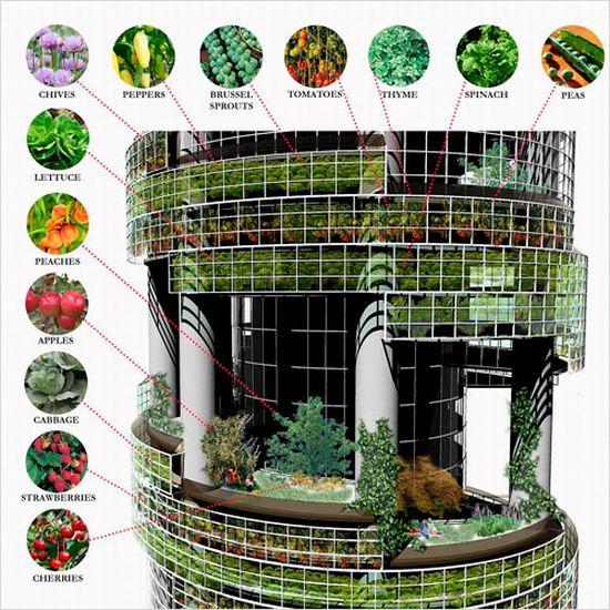 green building 2 yLBxV 7071