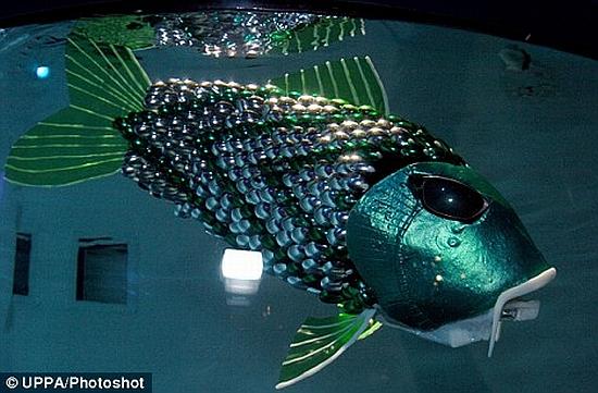 green robofish