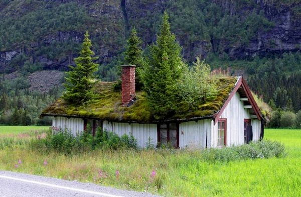 Green roof house Norway