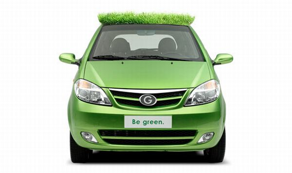 Green Roofs on Cars