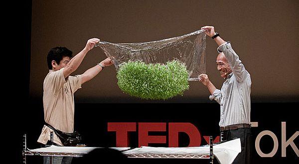 japanese bio expert showcases novel soil less cultivation technology ecofriend. Black Bedroom Furniture Sets. Home Design Ideas