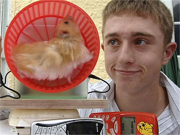 Hamster-Powered Cell Phone Charger