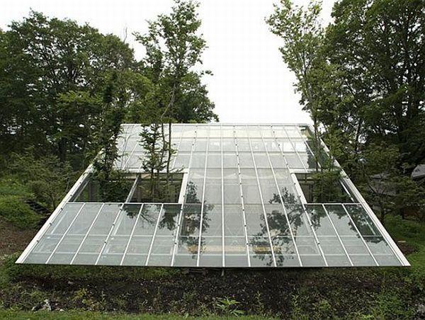 Hiroshi Iguchi's greenhouse