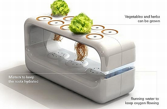 Hydroponic Vegetable Garden Design Fine Woodworking Blueprint