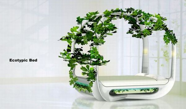 Kinetic energy powered green bed