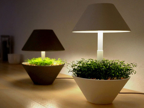 gadgets lightpot makes indoor plants even more appealing ecofriend. Black Bedroom Furniture Sets. Home Design Ideas