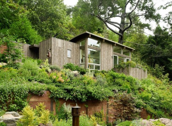 Spring Never Ceases At The Mill Valley Hillside Cabins