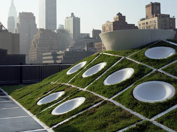 MINI Rooftop