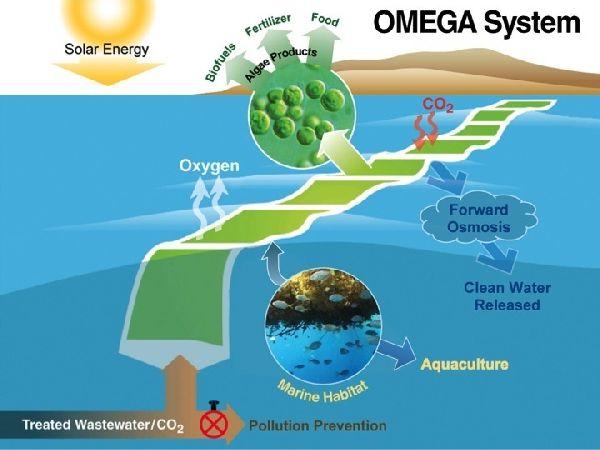 NASA Omega