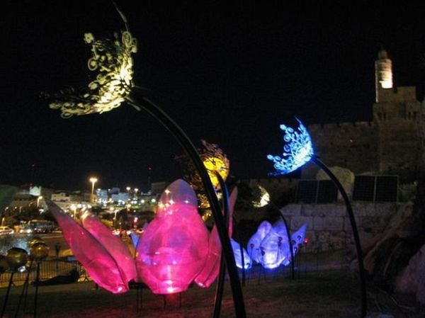Night Garden Art