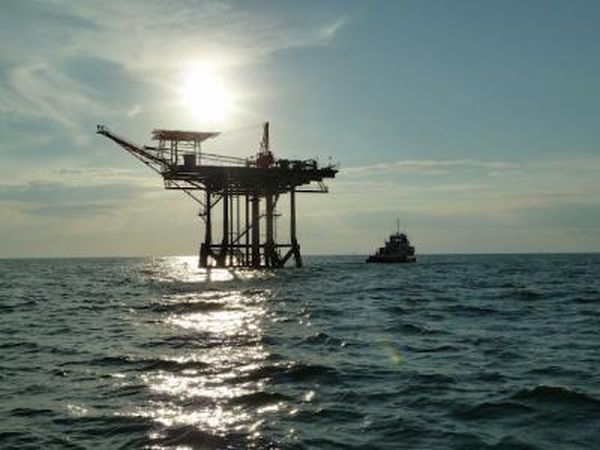 Oil from gulf disaster found in food chain