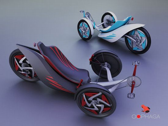 oophaga eco friendly trike3