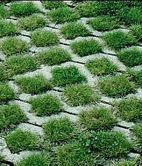 Permeable Paving Solution