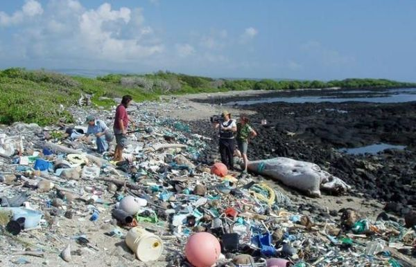 Plans to reduce plastic pollution