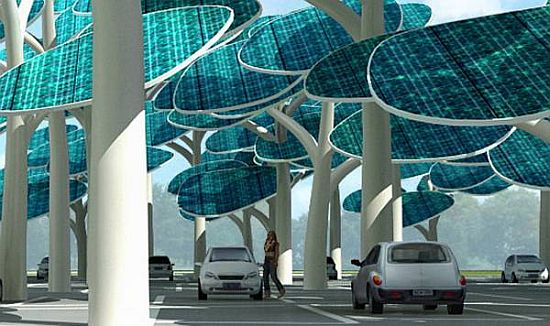 solar forest 1