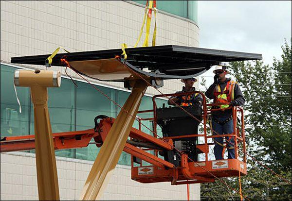 Solar Tree Installation