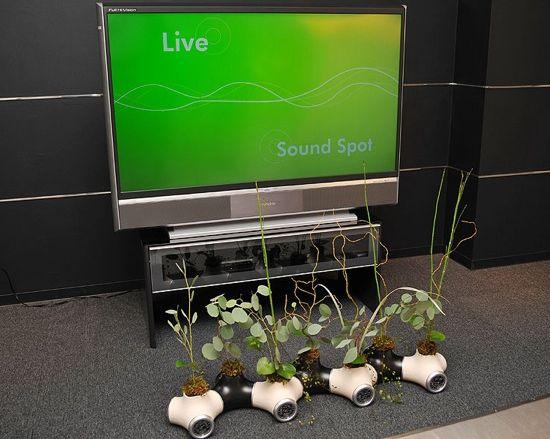 sound garden3 Ao2FZ 69