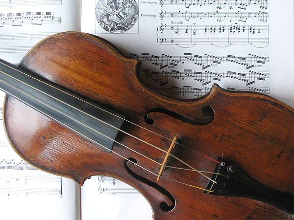 Spider silk spun into superior violin strings