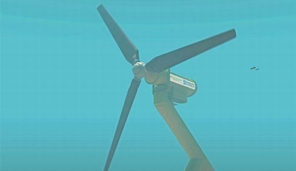 Tidal turbine proposal