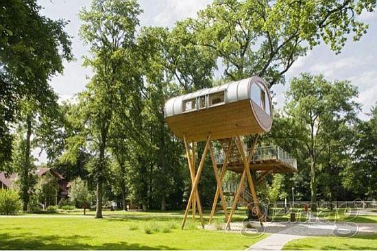 treehouse3 nLGp4 69