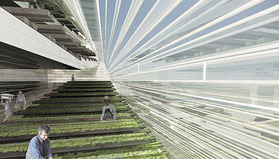 urban farm urban epicenter by jung min nam 6