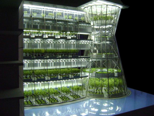 urban farming 01