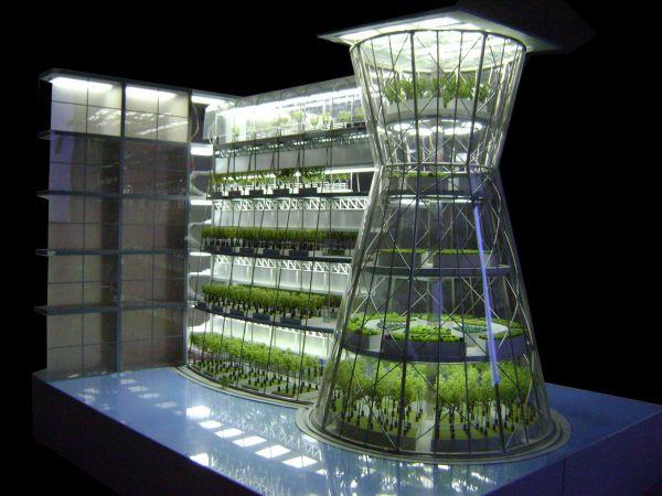 urban farming 02