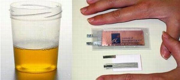 Urine-Powered Battery