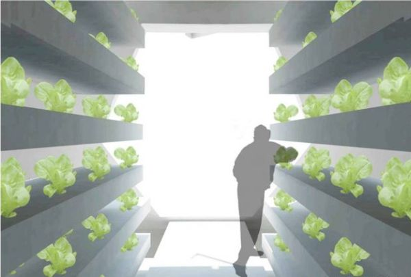 vertical farm interior 2010 3